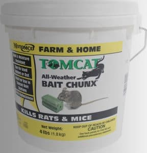 10 Best Rat Poisons In 2019 ( ULTIMATE Buyer's Guide And Reviews)